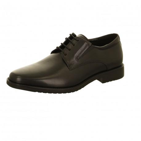Zapato hombre Oxford Salamander Adam 31-69001 3