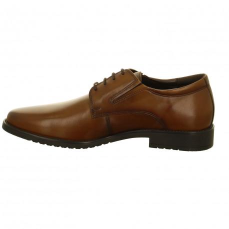 Zapato hombre Oxford Salamander Adam 31-69001 5