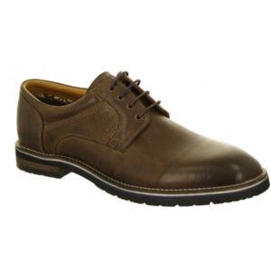 Zapato Hombre Salamander Vasco - AW 31-58901 12